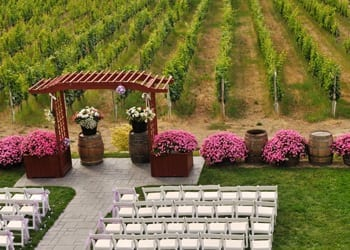 An aerial view of a vineyard wedding venue